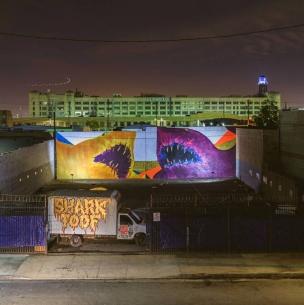 shark toof.jpg