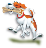 bone_dog