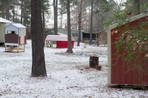snow day-2