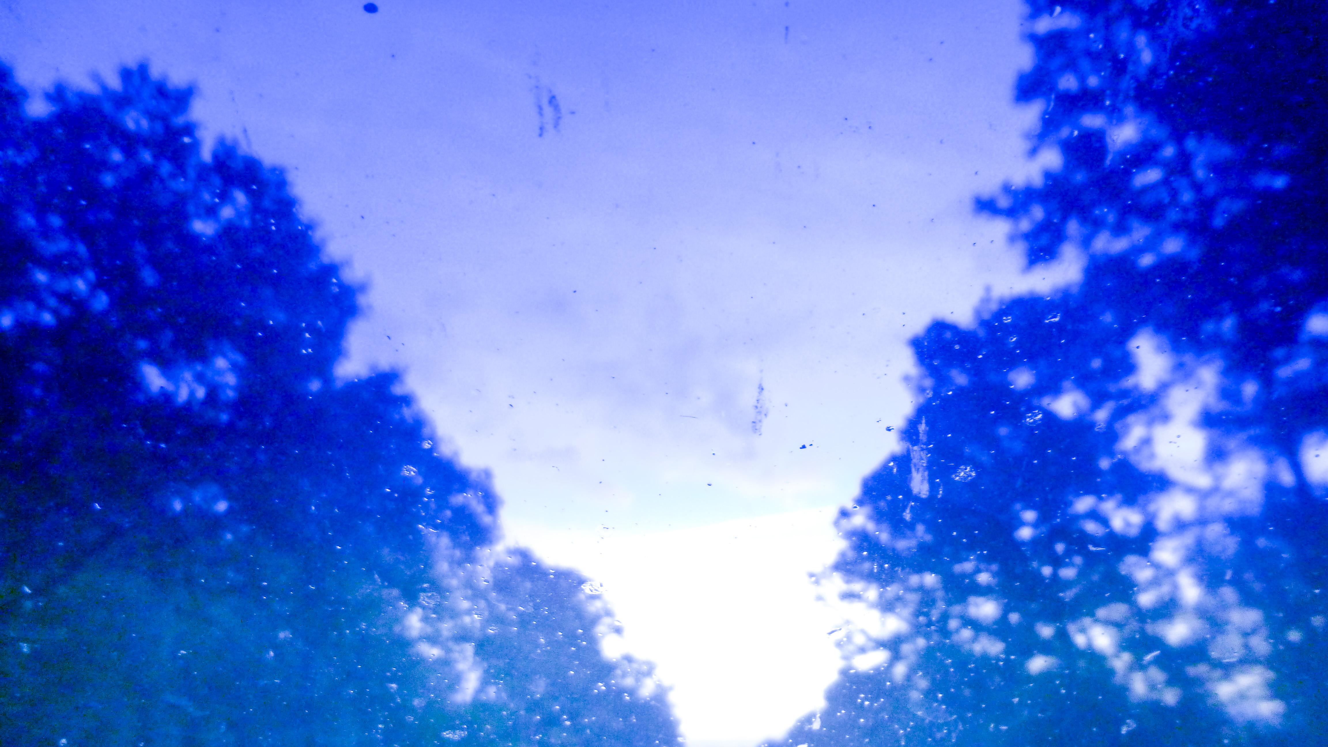 through windshield-3