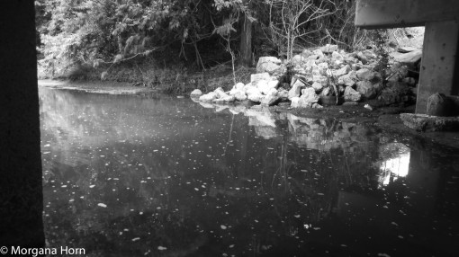 b w banita creek-2
