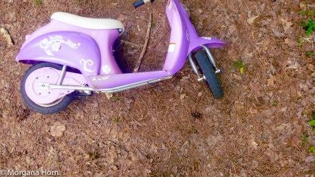 Bike Banal-1